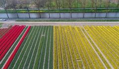 Les champs et le canal